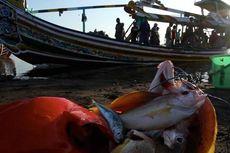 Menteri Susi akan Bebaskan Nelayan Kecil dari Retribusi Pemda