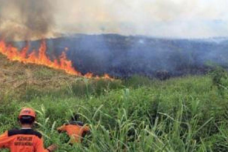 Pembakaran hutan kelapa sawit di Sumatera