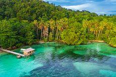 Raja Ampat Buka Kembali untuk Wisatawan Nusantara, Simak Ketentuannya