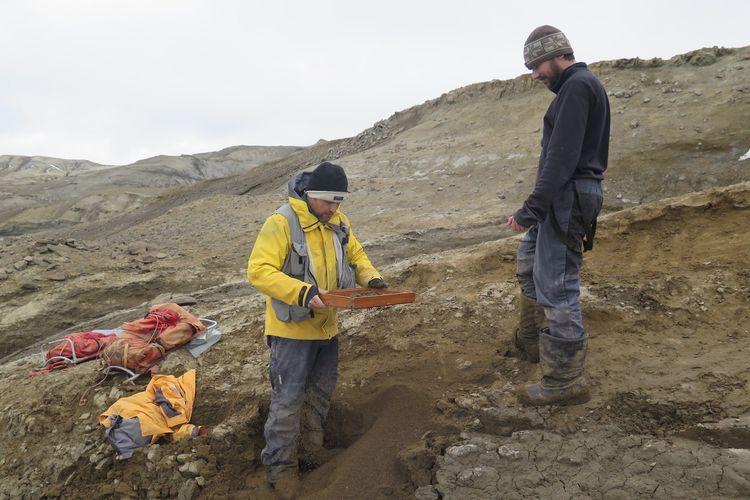 Para peneliti menggali fosil monster Loch Ness di Pulau Seymour, Antartika