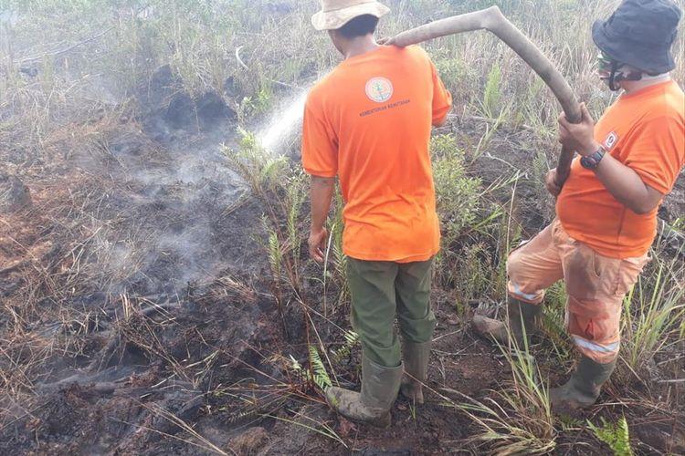 Tim satgas gabungan melakukan pemadaman kebakaran hutan dan lahan di Riau