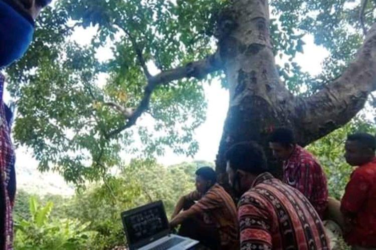 Foto : Kepala bersama Sekertaris dan anggota BPD Desa Wolo Klibang, Kecamatan Adonara Barat, Kabupaten Flores Timur ikut rakor virtual dengan Bupati di atas pohon, Jumat (8/5/2020).