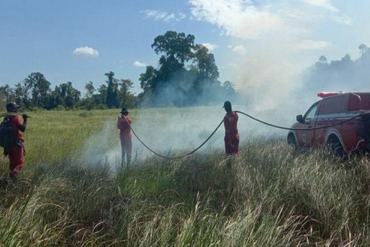 Pihak Taman Nasional Rawa Aopa Watumohai (TNRAW) di Kabupaten Konawe Selatan (Konsel), Provinsi Sulawesi Tenggara (Sultra) tengah berupaya memadamkan api di kawasan taman nasional tersebut, Senin (24/8/2020).