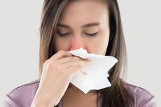 5 Cara Mengatasi Hidung Tersumbat Secara Alami