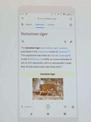 Fitur Google Go Translate yang bisa menerjemahkan artikel langsung dari web.