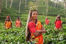 PBB: Sebagian Besar Negara Gagal Melindungi Perempuan Selama Pandemi Corona