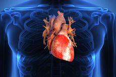 """E-cardio"" untuk Deteksi Dini Penyakit Jantung"