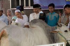 Malam Ini, Panitia Masjid Istiqlal Bagikan 7.000 Bungkus Daging Kurban