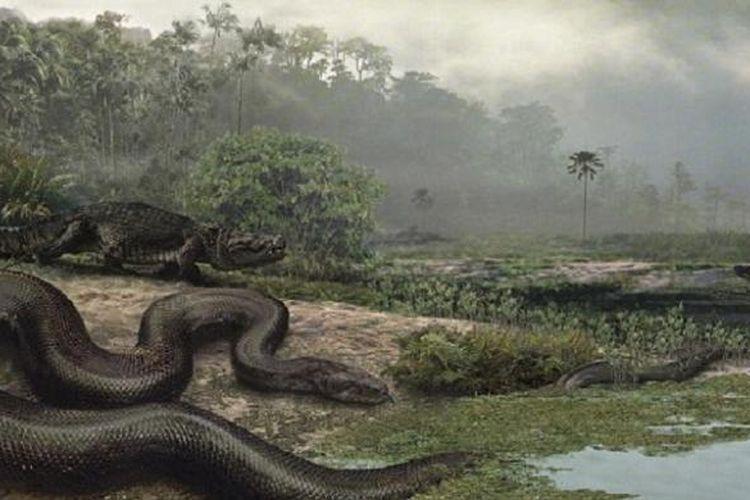 Ilustrasi Titanoboa cerrejonensis, beratnya mencapai 1,25 ton dengan panjang mencapai 12 meter.