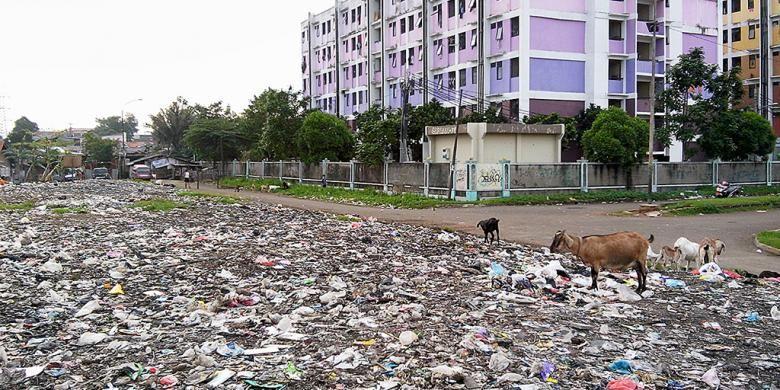 Hamparan sampah seluas lebih dari 500 meter persegi terlihat di samping Rumah Susun Sederhana Sewa Pinus Elok, Cakung, Jakarta Timur, Kamis (5/2). Hamparan sampah itu telah berusia 16 tahun dan tak pernah diangkut. Baru pada awal Januari separuh timbunan sampah itu diangkut setiap hari oleh Suku Dinas Kebersihan Jakarta Timur.