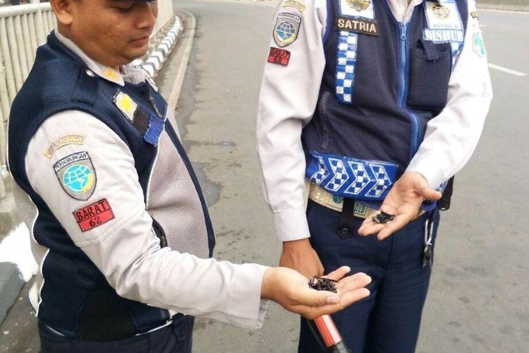 Suku Dinas Perhubungan bersama Satpelhub Kecamatan Grogol Petamburan melalukan operasi ranjau paku di kawasan Grogol pada Selasa (5/6/2018). (Dok Suku Dinas Perhubungan Jakarta Barat).