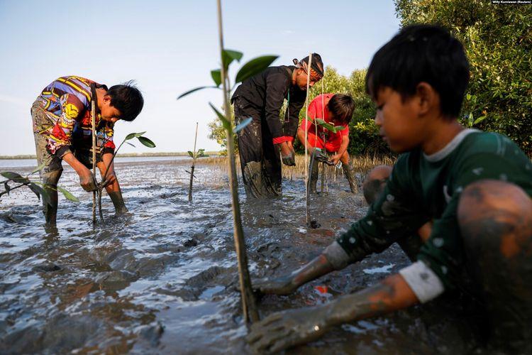 Samsudin menanam pohon-pohon bakau bersama anak-anak di Pantai Tiris, Desa Pabeanilir, Kabupaten Indramayu, Jawa Barat, 11 Maret 2021.
