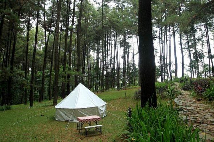 Glamourous Camping atau Glamping di Taman Wisata Alam Gunung Pancar, Bogor.