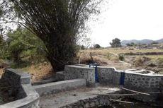 Berkat Dam Parit, Indeks Pertanian dan Luas Areal Tanam di Sumbawa Meningkat