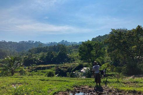 Program KUR Bantu Petani di Tapanuli Selatan Dapatkan Modal untuk Jalankan Usaha