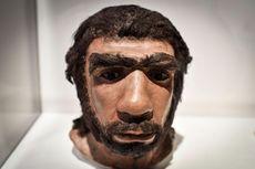 Bukti Baru, Nenek Moyang Manusia Tak Sebabkan Neanderthal Punah