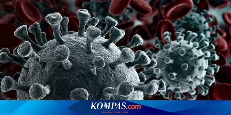 Masih Jadi Kontroversi, Ahli Sebut Ivermectin Belum Terbukti sebagai Antiviral