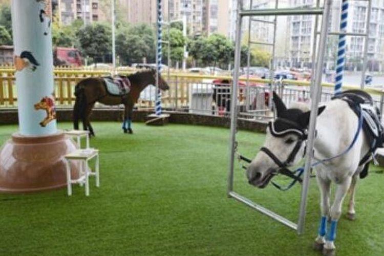 Wahana komidi putar di pusat perbelanjaan di China menggunakan kuda poni asli.