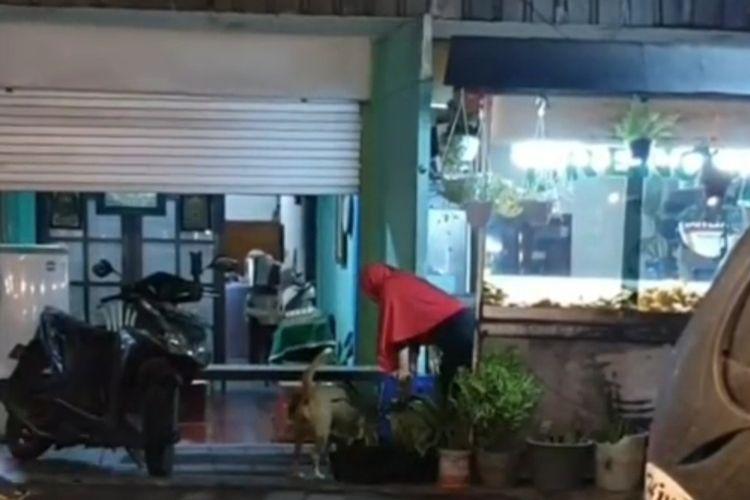 Potongan video ibu penjual gorengan di Jalan Raya Semat, Tububeneng, Kuta Utara, Badung, Bali, yang setiap hari memberi makan anjing.