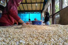 Demi Tahu Tempe, Indonesia Bakal Impor 2,6 Juta Ton Kedelai