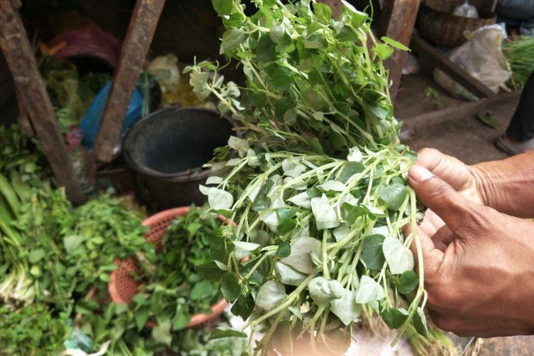 Daun suruhan atau dalam bahasa latin disebut piperaceae yang digunakan sebagai pelengkap masakan khas Kamboja, lok lak.