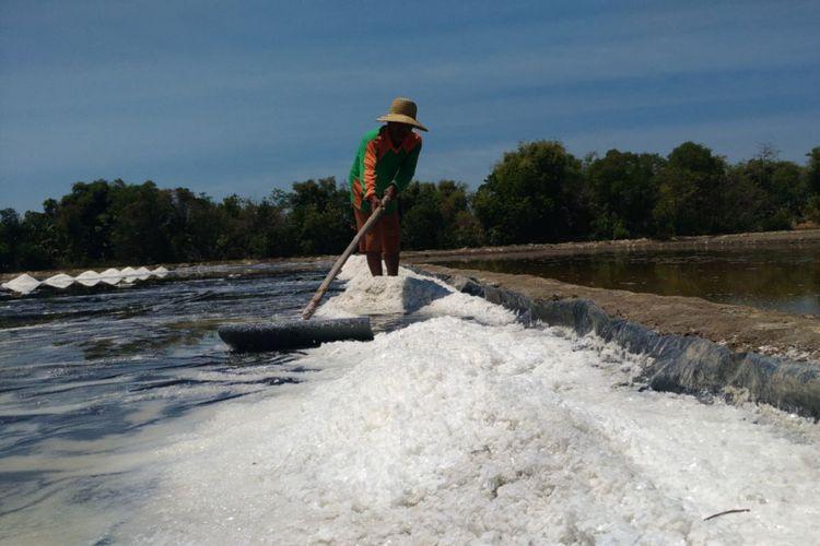 Aktivitas petani garam di Pamekasan, Madura, Jawa Timur.  Gambar diambil pada Rabu (6/9/2017).