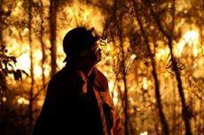 Kebakaran Meluas, New South Wales Berlakukan Keadaan Darurat
