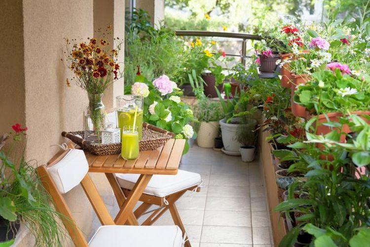 Membuat kebun mini di balkon apartemen