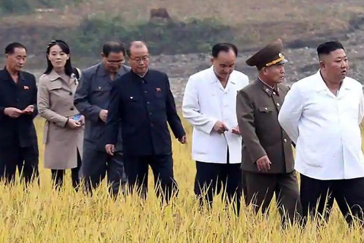 Foto tak bertanggal yang dirilis kantor berita Korea Utara KCNA pada 2 Oktober 2020 menunjukkan Pemimpin Kim Jong Un dan adiknya Kim Yo Jong (dua dari kiri), bersama sejumlah pejabat Korea Utara lainnya mengunjungi sawah di Kimhwa County, Provinsi Kangwon.
