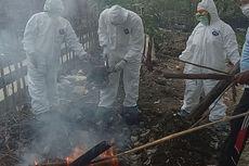 Ratusan Unggas di Tegal Mati Terserang Flu Burung, Kandang Disemprot Disinfektan