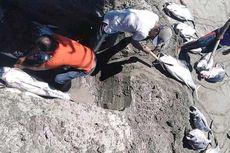 Viral Foto Nelayan Kubur 2 Ton Tuna Hasil Tangkapan, Ini Penjelasannya