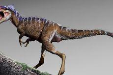 Nenek Moyang Sebesar Rusa dan 4 Fakta T-rex Lain yang Harus Anda Tahu