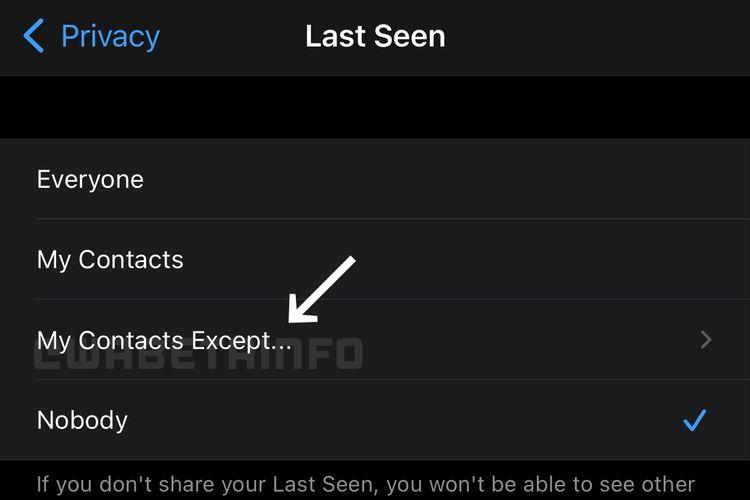 Fitur Last Seen di WhatsApp yang hadir dengan menu My Contacts Except....