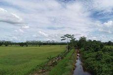 Dukung Lumbung Pangan Baru, Jaringan Irigasi 85.000 Hektar Disiapkan