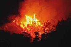 BMKG: Waspada Potensi Kebakaran Hutan dan Lahan di Wilayah Berikut