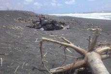 Pemerintah Gelar Operasi 30 Hari di Laut, Atasi Kerusakan Lingkungan