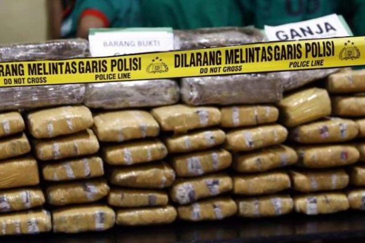 Barang bukti Ganja  seberat 69,2 kg dan para tersangka dihadirkan saat konferensi pers pengungkapann kasus ganja jaringan Aceh periode Agustus 2013 di Mapolrestro Jakarta Barat, Senin (26/8/2013).