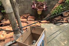 Tanaman Mirip Bunga Bangkai di Cipete Selatan Berbuah Rezeki untuk Nova