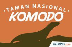 Apresiasi Permintaan UNESCO, Walhi Minta Pemerintah Hentikan Proyek di TN Komodo