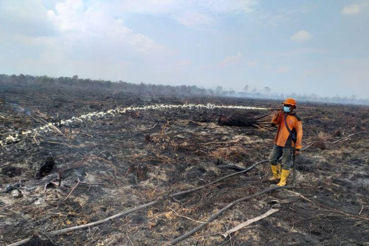 Pemadaman api karhutla di Kelurahan Bangsal Aceh, Kecamatan Sungai Sembilan, Kota Dumai, Riau, Senin (18/2/2019).