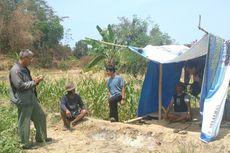 2 Ekor Macan Tutul Melintasi Kebun Warga di Sukabumi, Diduga Kehausan