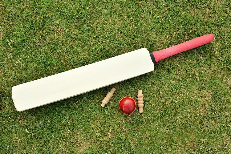 Tongkat pemukul kriket.