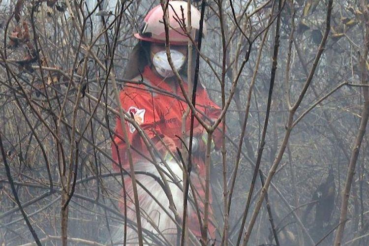 Sola mempraktikkan ilmu yang didapatnya dari pelatihan pemadaman kebakaran hutan dan lahan yang ia ikuti sebelum bergabung dengan Tim Cegah Api, kita kan nggak bisa sembarang siram.