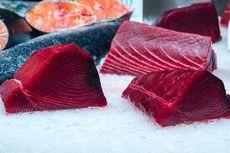 Panduan Lengkap Pilih Ikan Tuna yang Segar, Perhatikan Jenisnya!
