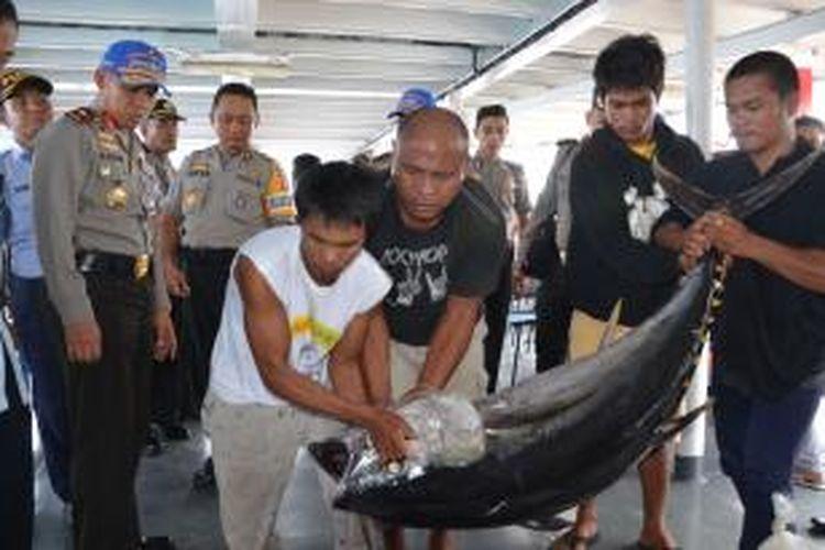Satu dari sekian ratus ikan tuna hasil illegal fishing yang diamankan polisi di perairan Halmahera, Maluku Utara