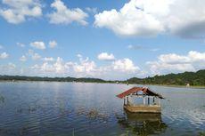 Direndam Banjir, Sawah di Samarinda bagai Danau, Petani Rugi Ratusan Juta Rupiah