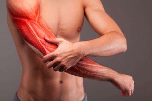 Cara Bangun Otot dengan Memakai Beban Ringan