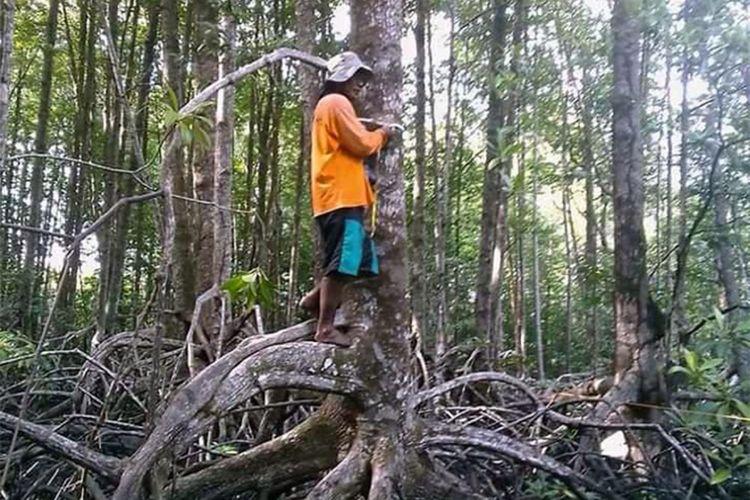 Umar Pasandre, Ketua kelompok sadar lingkungan Paddakauang