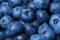 Rekayasa Genetik: Pengertian, Manfaat, dan Dampaknya