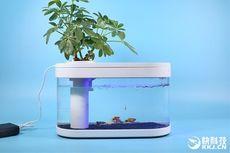 Xiaomi Fish Tank, Akuarium Portabel Bertenaga Power Bank